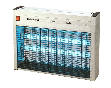 Halley 2138